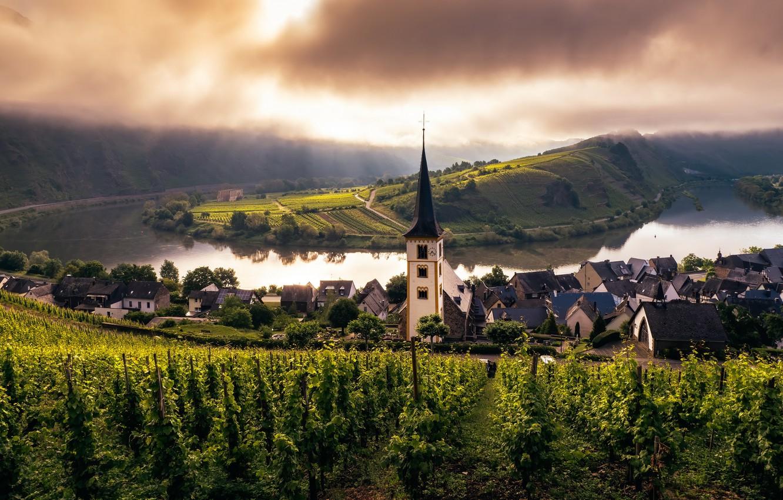 Photo wallpaper church, Misty Morning, mosel, trier, vineyard
