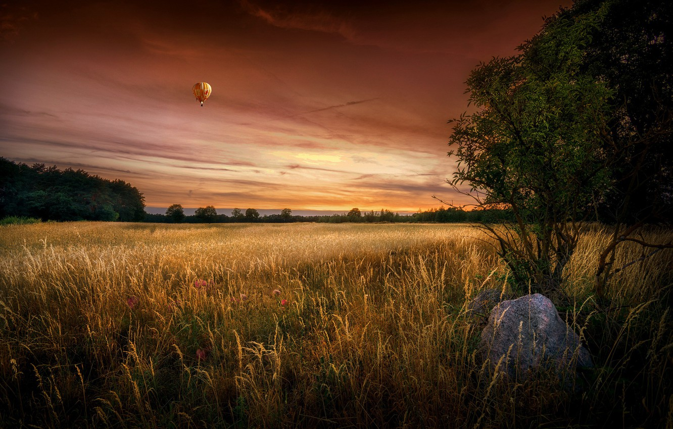 Photo wallpaper field, summer, sunset, ball