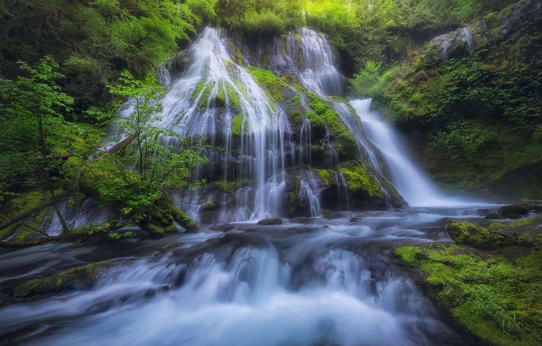 Photo wallpaper river, waterfall, moss, cascade, Columbia River Gorge, Panther Creek Falls, Gifford Pinchot National Forest, Washington …