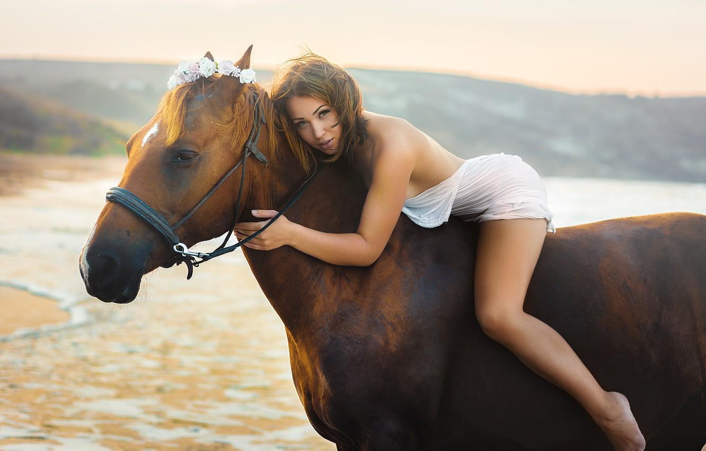 Wallpaper legs, pretty, horse, Oleg