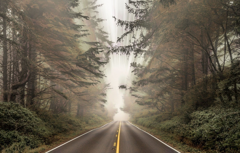 "Photo wallpaper forest, road, landscapes, fog, bushes, blur, asphalt, distortion, 4k ultra hd background, ""Time-Lapse Photography"", markings"