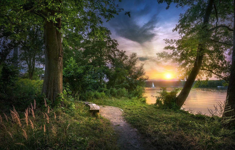 Photo wallpaper lake, Park, shore, bench