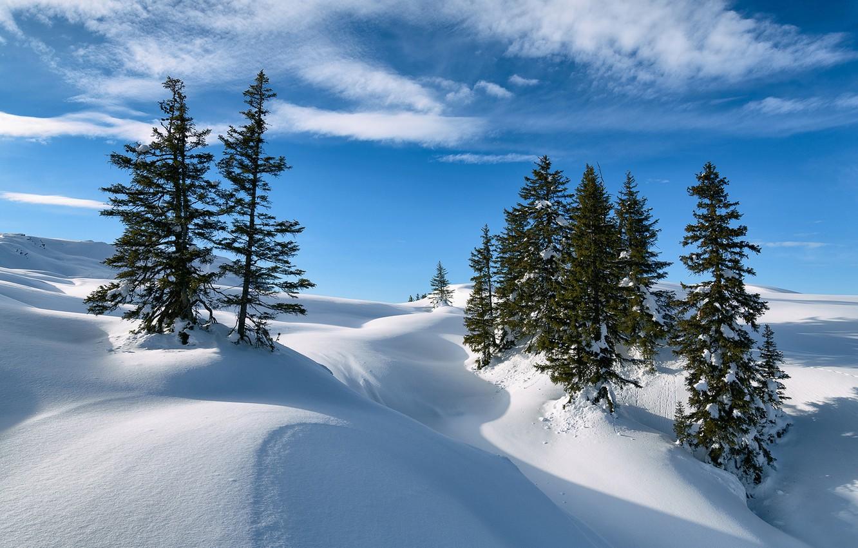 Photo wallpaper winter, snow, trees, Austria, ate, Alps, the snow, Austria, Alps, Vorarlberg, Vorarlberg, Sun head, Silbertal