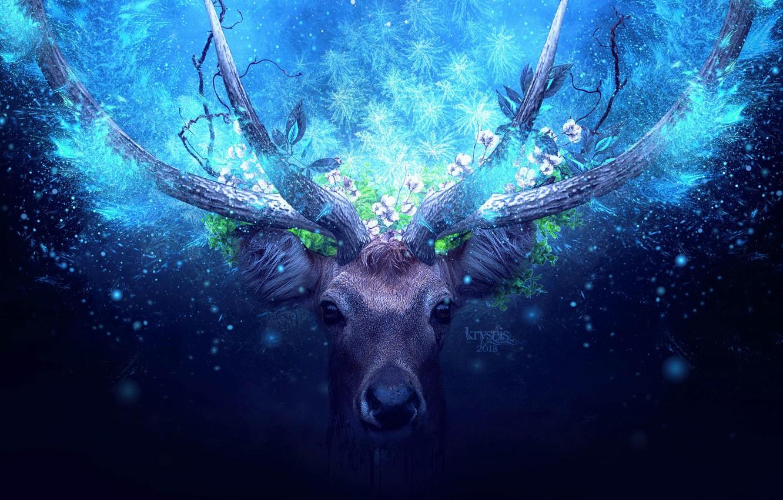 Photo wallpaper greens, look, animal, magic, foliage, deer, horns, magic, rays of light, animal, look, greenery, deer, …