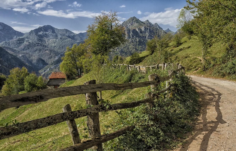 Photo wallpaper road, landscape, nature, the fence, beauty
