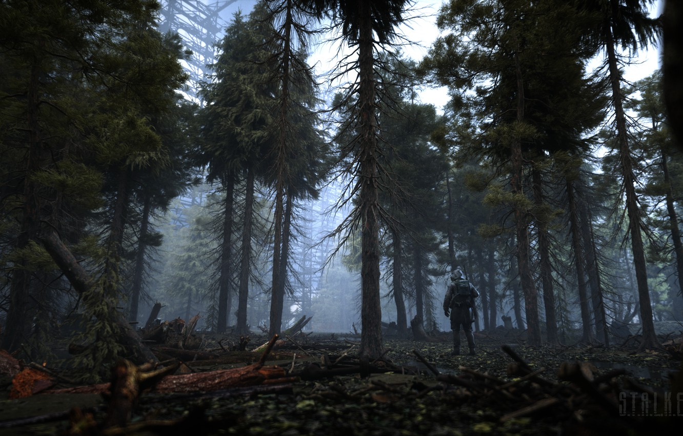 Photo wallpaper Trees, Forest, Stalker, logo, Logo, Stalker, Chernobyl, S. T. A. L. K. E. R. 2, …