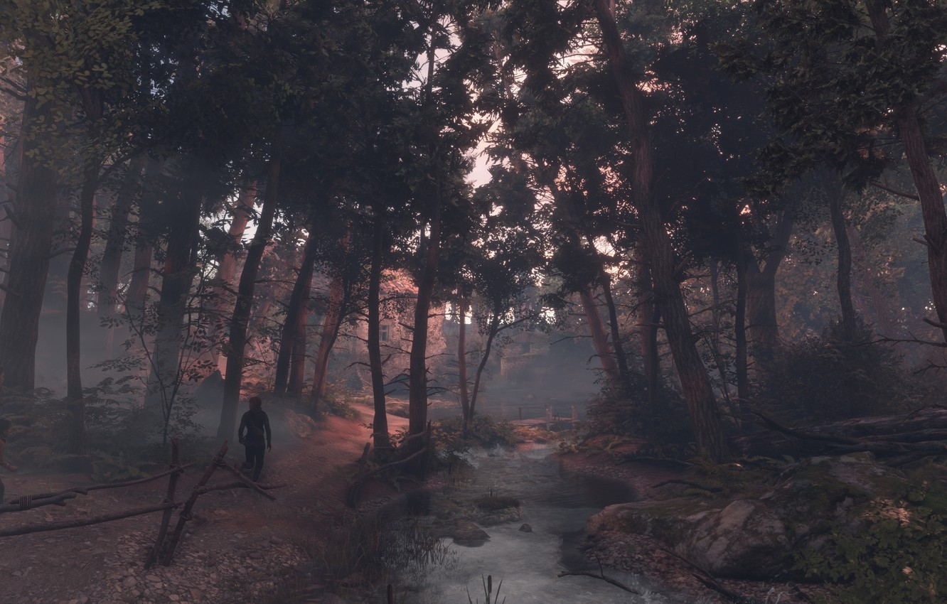 Photo wallpaper forest, trees, river, a plague tale: innocence
