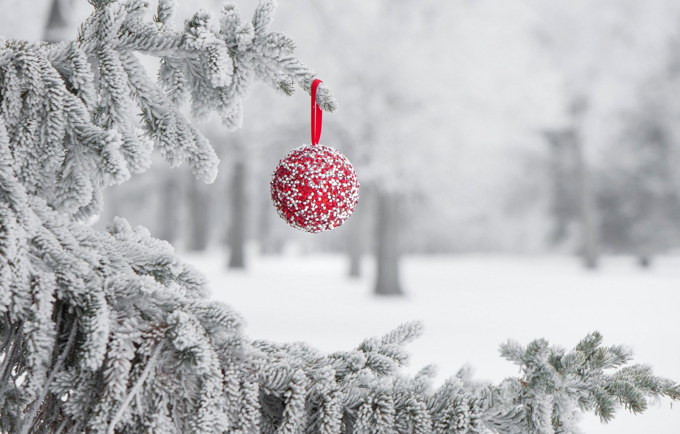 Photo wallpaper winter, frost, snow, holiday, toy, ball