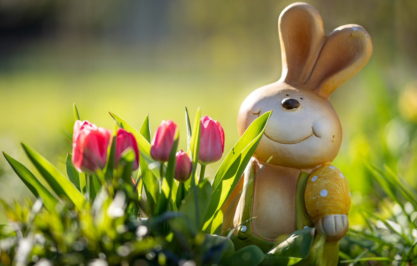 Photo wallpaper light, flowers, smile, mood, toy, egg, hare, spring, rabbit, Easter, tulips, pink, ears, face, Bunny, …