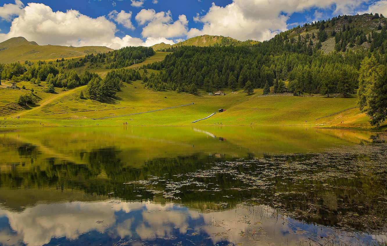 Photo wallpaper forest, summer, clouds, lake, reflection, shore, house, pond