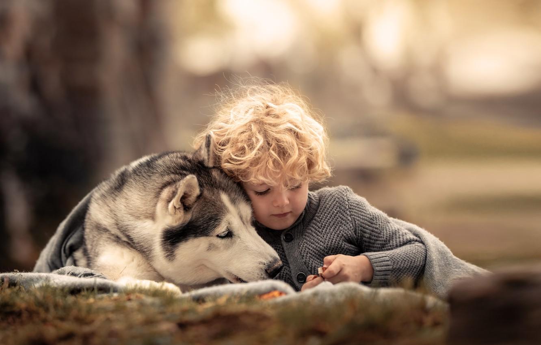 Photo wallpaper animal, dog, boy, friends, curls, child, husky, dog, Agi Rygula