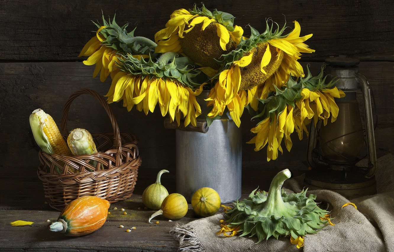 Photo wallpaper autumn, sunflowers, flowers, style, retro, the dark background, table, background, Board, lamp, grain, bouquet, corn, …