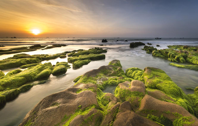 Photo wallpaper sea, the sky, the sun, algae, landscape, sunset, nature, stones, dawn, shore, coast, horizon, pond, ...