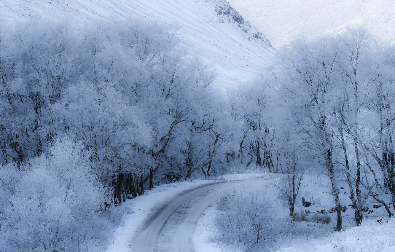 Photo wallpaper winter, road, snow