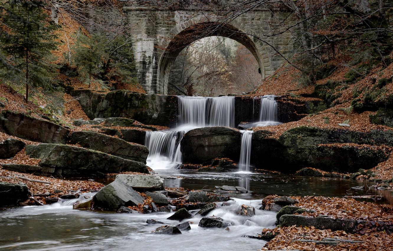 Photo wallpaper autumn, bridge, river, foliage, waterfall, cascade, Bulgaria, Bulgaria, Citovsky Waterfall, Sitovski waterfall