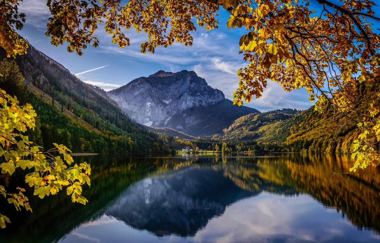 Photo wallpaper autumn, mountains, branches, lake, reflection, Austria, Alps, Austria, Alps, Upper Austria, Upper Austria, Langbathseen, Lake …