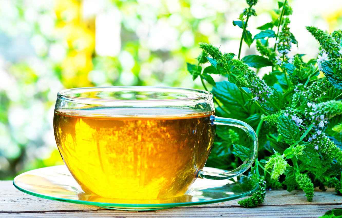 Wallpaper Plant Cup Mint Infusion Herbal Tea Images For Desktop Section Eda Download