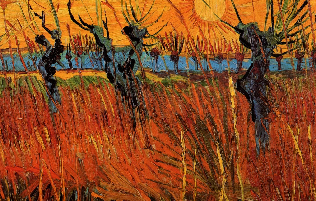 Photo wallpaper the sun, trees, Vincent van Gogh, Willows at Sunset