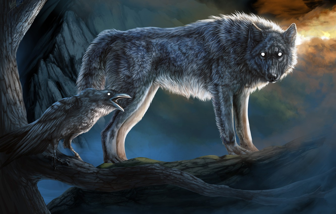 Photo wallpaper look, nature, wolf, crow