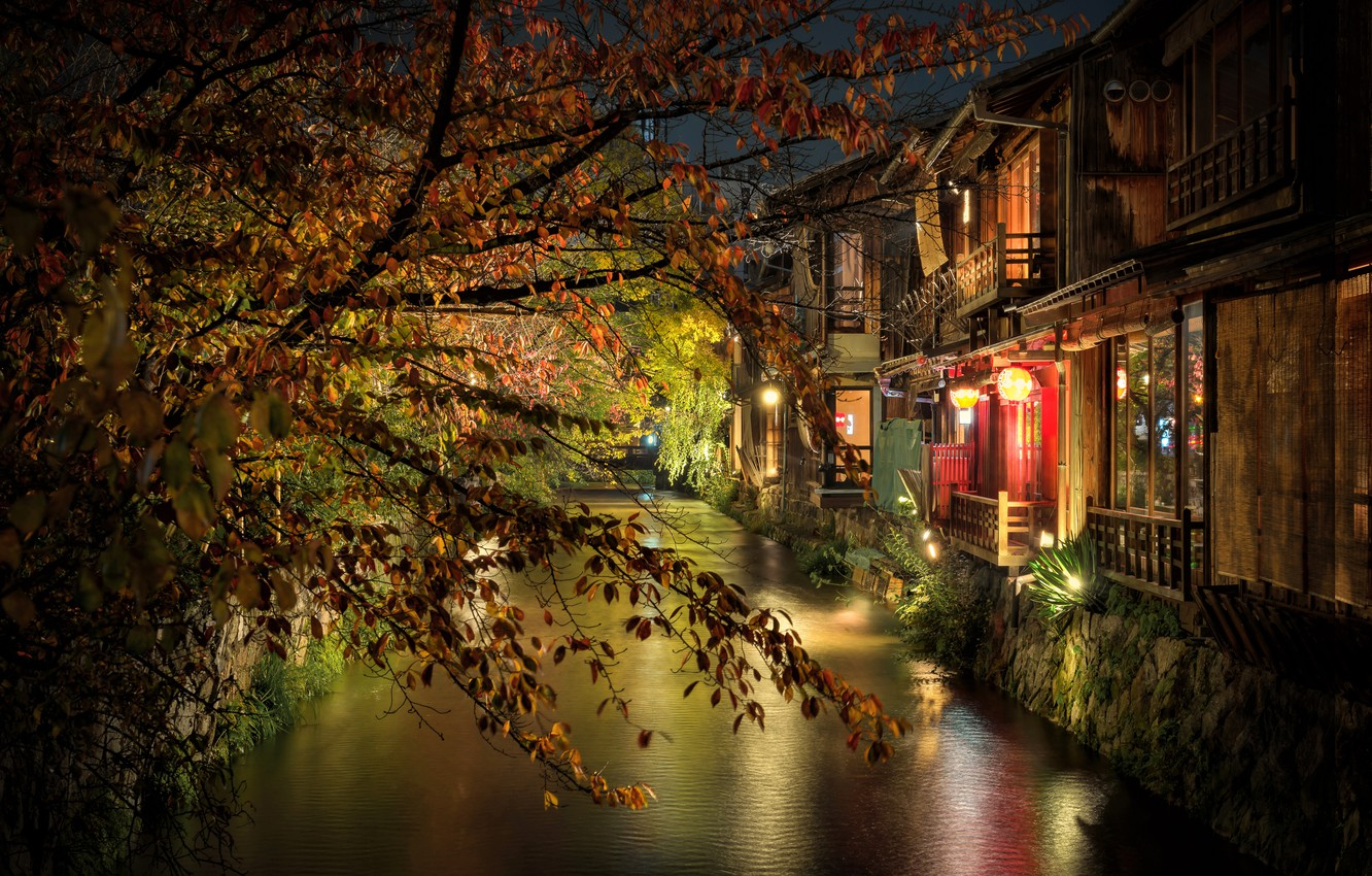 Photo wallpaper night, branches, the city, home, Japan, lighting, channel, Kyoto