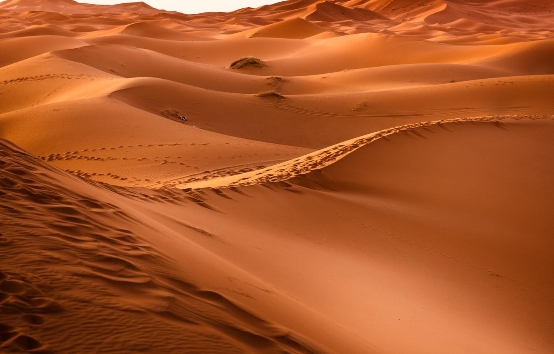 Photo wallpaper Hot, Sahara, Sand, Desert, Dunes
