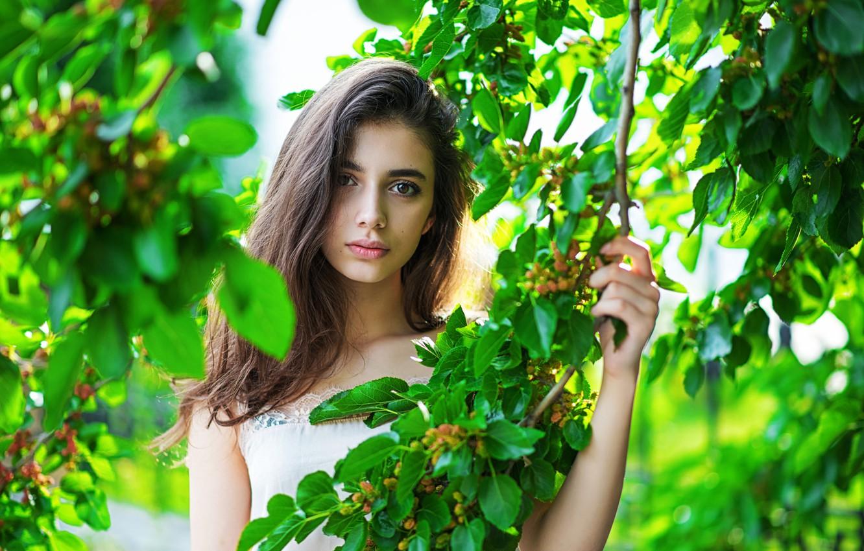 Photo wallpaper look, leaves, branches, pose, model, portrait, makeup, brunette, hairstyle, bokeh, Evgeny Smaltsuga