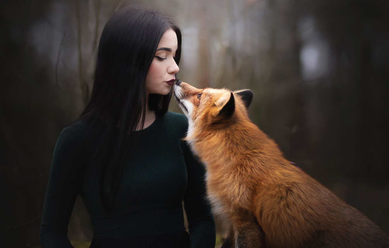 Photo wallpaper girl, kiss, brunette, Fox, red, bokeh