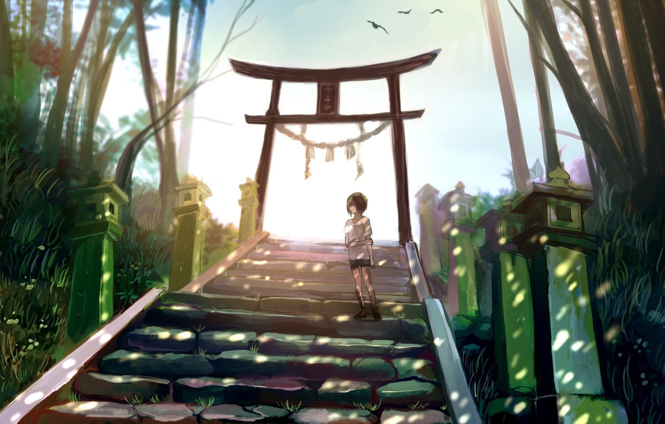Wallpaper Girl Nature Lights Torii Images For Desktop Section