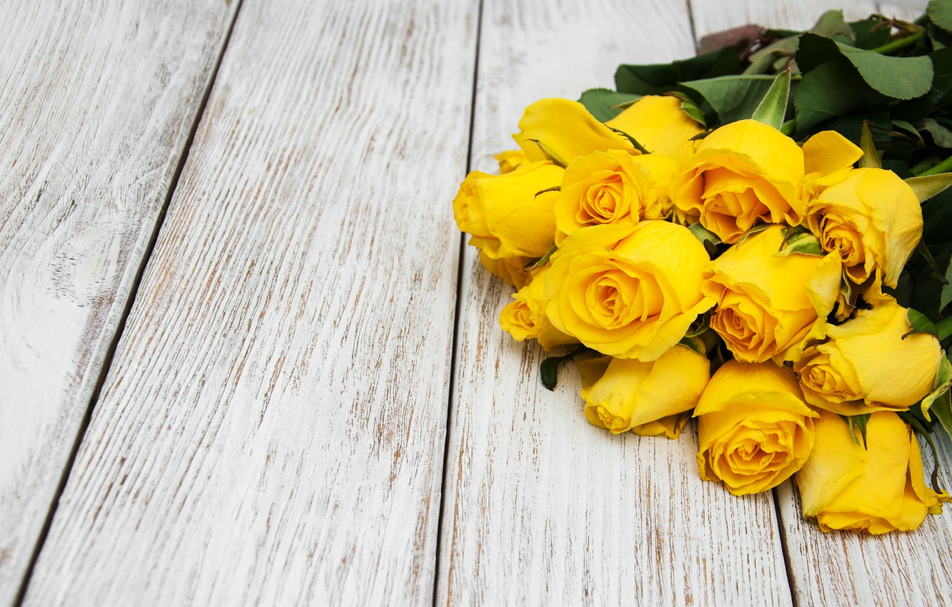 Photo wallpaper roses, bouquet, yellow, flower, beautiful, roses, bouguet, Olena Rudo