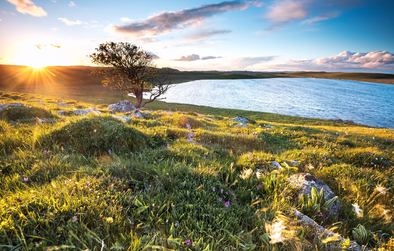 Photo wallpaper the sky, grass, the sun, rays, landscape, flowers, nature, lake, stones, tree, hills, France