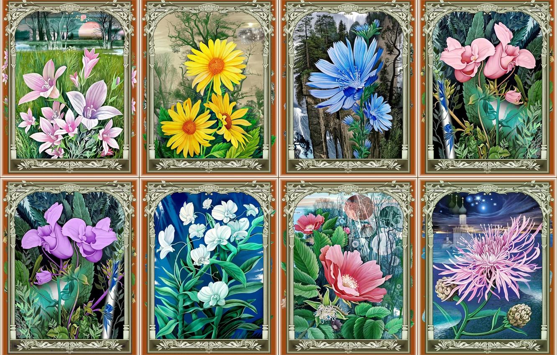 Photo wallpaper flowers, seasons, painting, orchids, коллаж из картин, художник Константин Авдеев, весна-лето-осень-зима, колокольчики-ромашки-цикорий-шиповник-хризантема