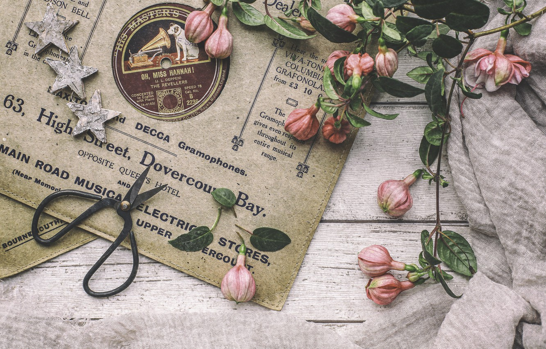Photo wallpaper stars, record, vintage, scissors, fuchsia
