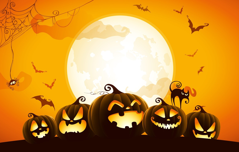 Photo wallpaper spider, Halloween, moon, cat, orange, holiday, digital art, bats, pumpkins, black cat, spooky, spider web