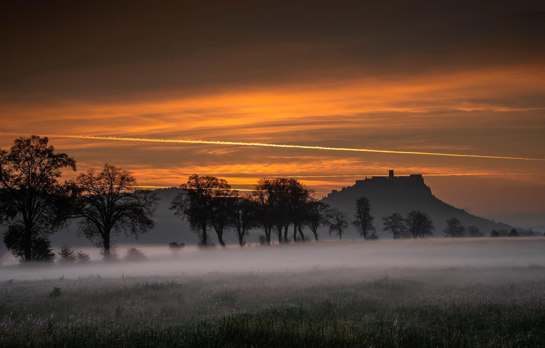 Photo wallpaper field, night, fog