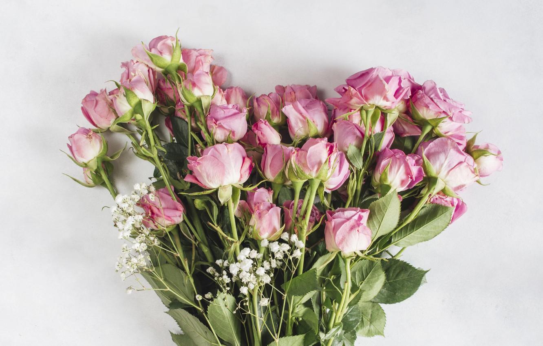 Photo wallpaper flowers, roses, bouquet, Pink, Rose, beautiful, bouquet