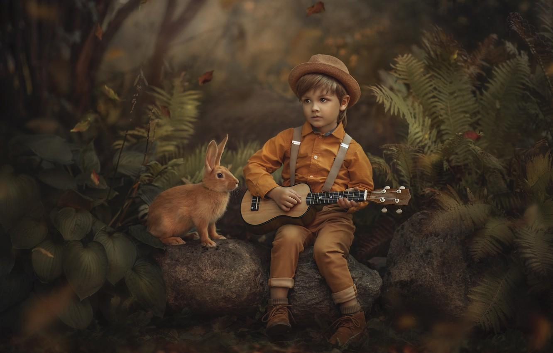 Photo wallpaper forest, nature, stones, animal, vegetation, guitar, boy, rabbit, child, Jansone Dace