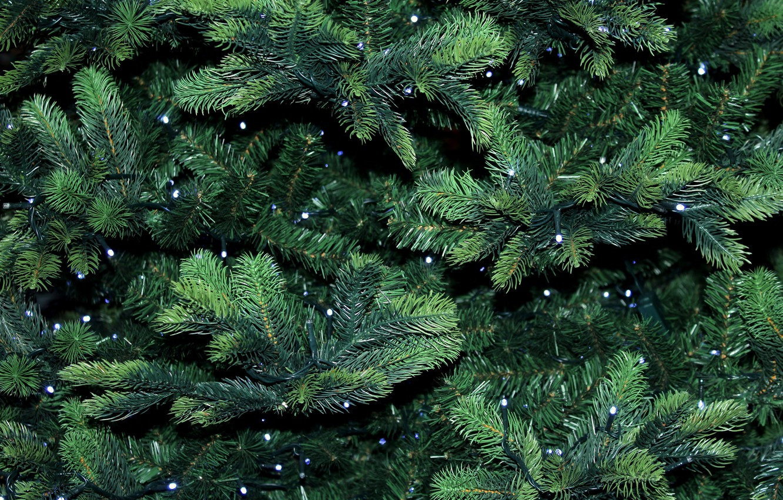 Photo wallpaper background, garland, Christmas tree