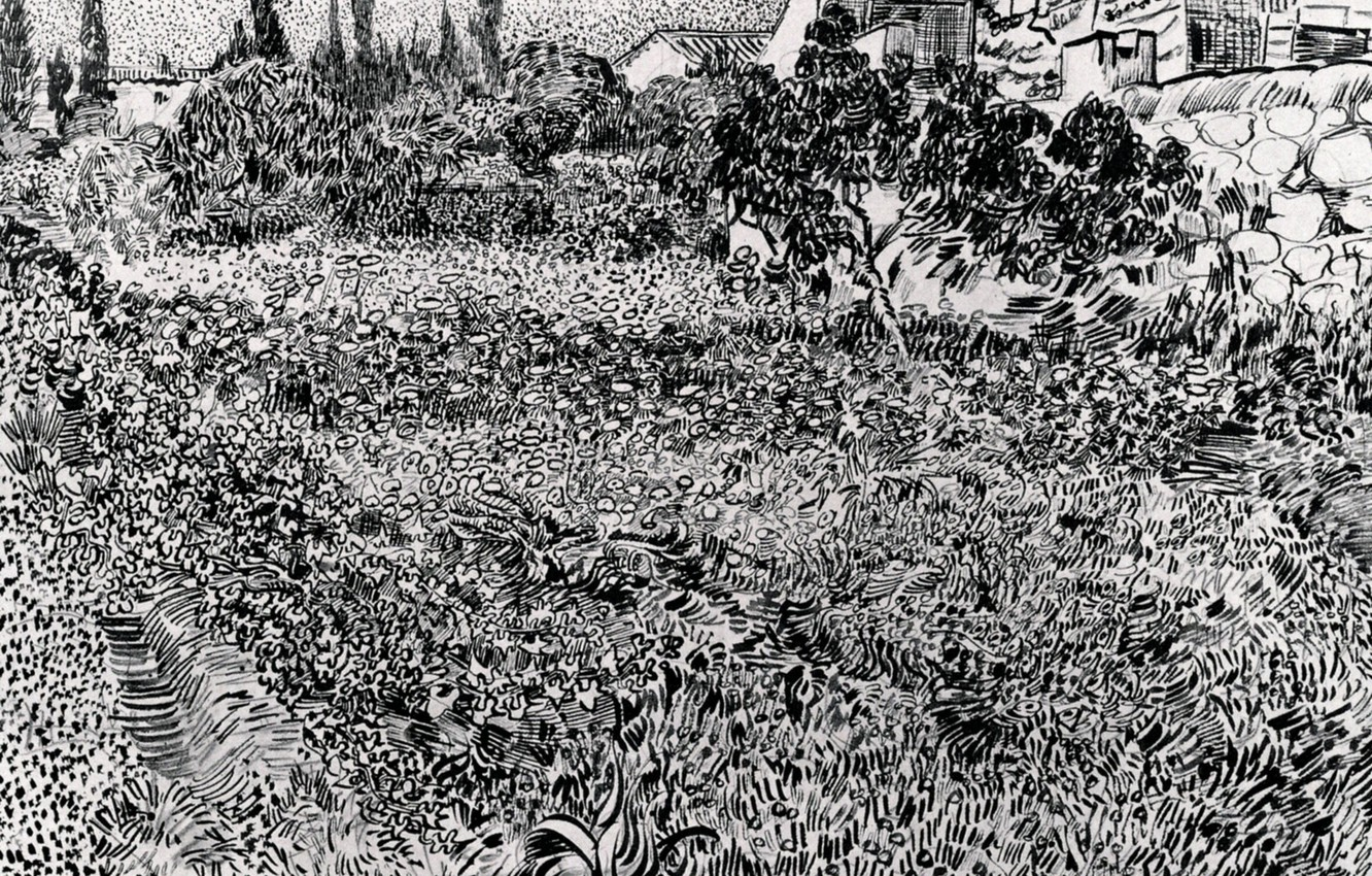 Wallpaper Flowers Vegetation Plants Black And White Vincent Van Gogh Garden With Flowers 2 Images For Desktop Section Zhivopis Download