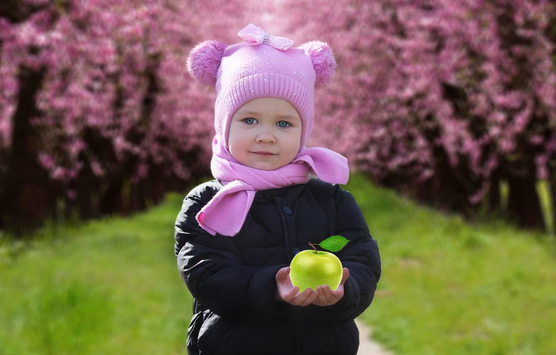 Photo wallpaper background, Apple, child, spring, girl