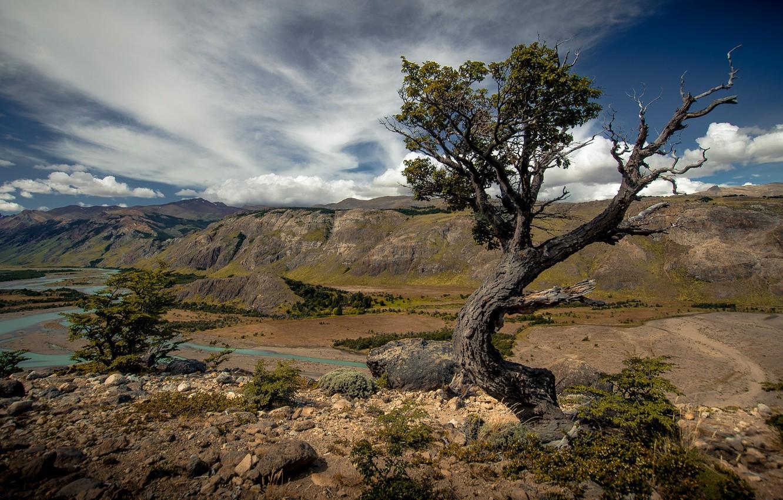 Photo wallpaper landscape, mountains, nature, river, tree, landscape, beauty