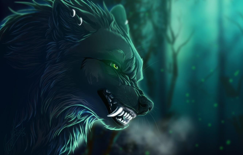 Photo wallpaper night, wolf, grin
