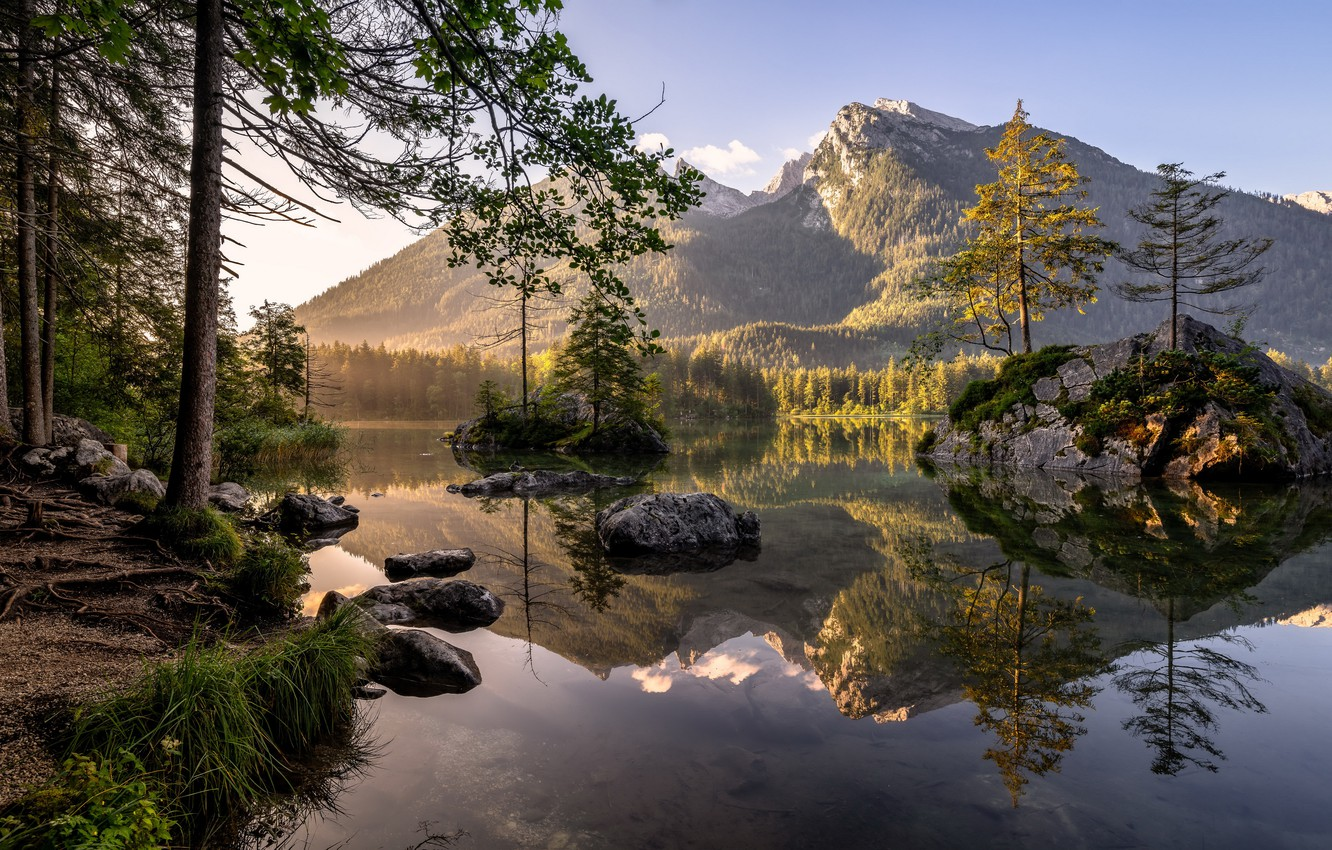 Photo wallpaper forest, summer, mountains, lake, morning