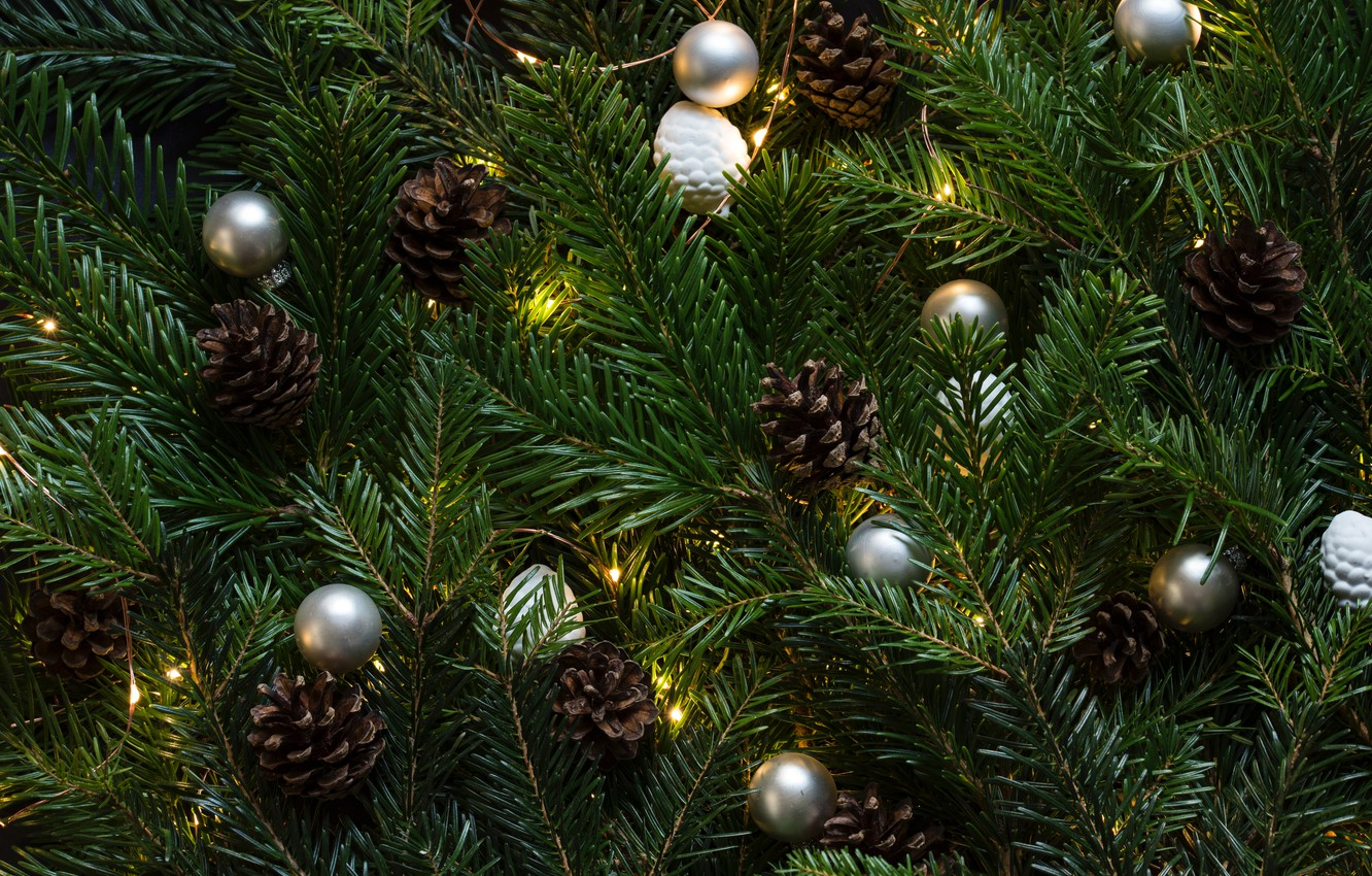 Photo wallpaper green, christmas tree, christmas lights