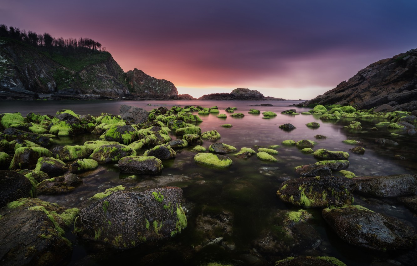 Photo wallpaper sea, clouds, algae, sunset, mountains, stones, rocks, shore, the evening, green, Bay, Spain