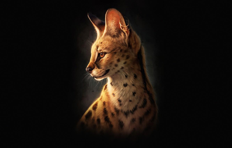 Photo wallpaper Minimalism, Cat, Face, Art, Cat, Illustration, Serval, Animal, Minimalism, Animal, Serval, Johanna Tarkela, by Johanna …