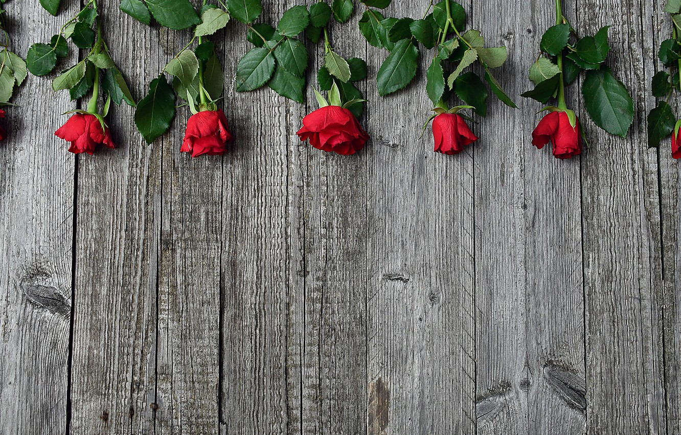 Photo wallpaper roses, red, wood, decor
