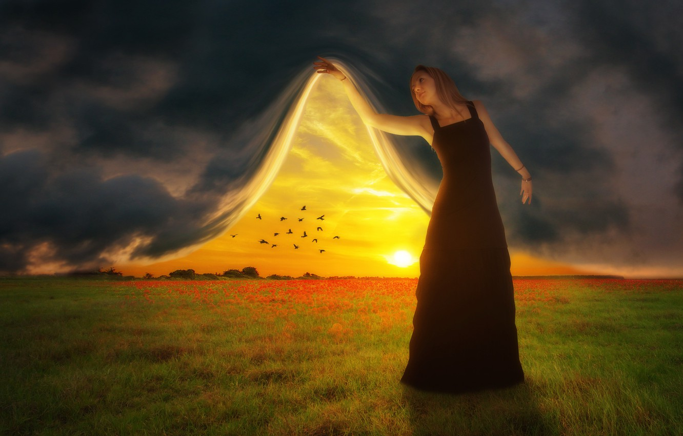 Photo wallpaper field, the sky, sunset, birds, photoshop, curtain, girl art