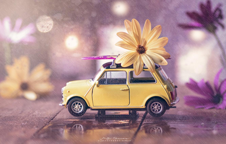 Photo wallpaper water, flowers, rain, toy, Board, machine, bokeh