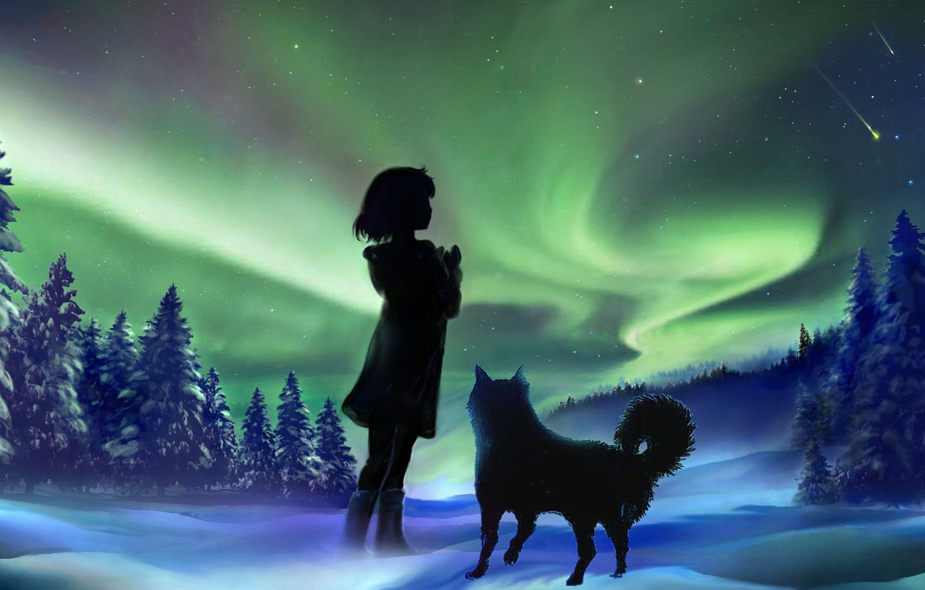 Photo wallpaper winter, the sky, girl, snow, night, nature, dog, Northern lights, by 00
