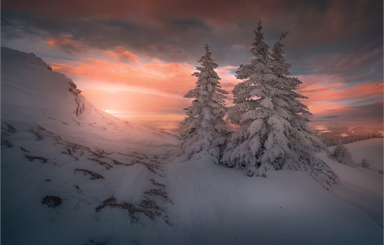 Wallpaper Winter The Sky Clouds Snow Sunset Mountains Ate The Snow Christmas Trees Images For Desktop Section Pejzazhi Download